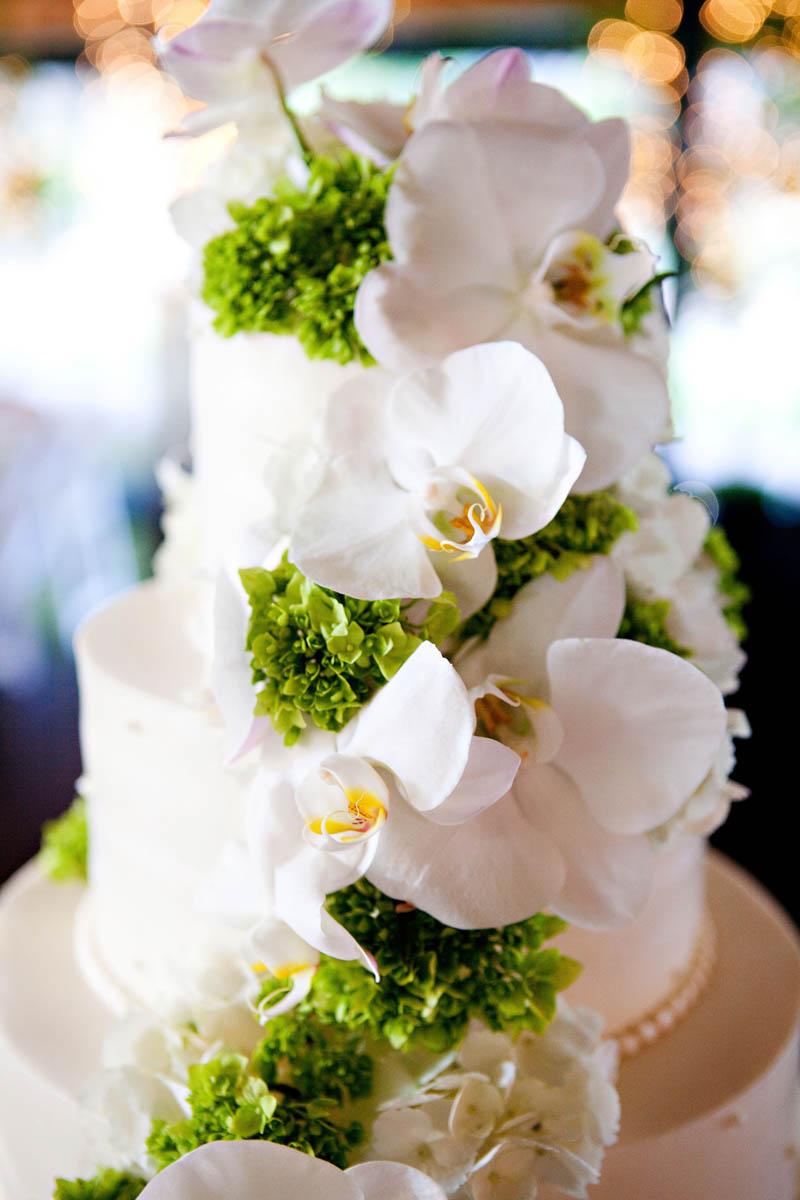 Wedding_photos_Raleigh_photographer_0029