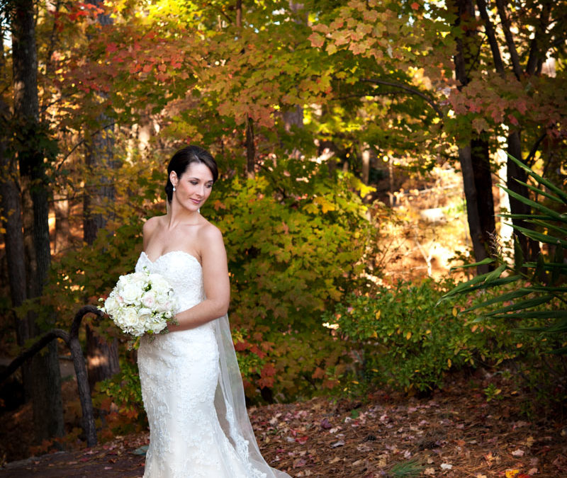 Beautiful Southern Bride Portriat at Duke Gardens Wedding Photography in Raleigh