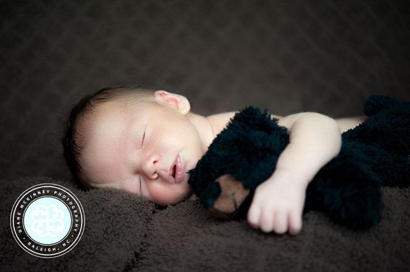 newborn Photos raleigh photographer