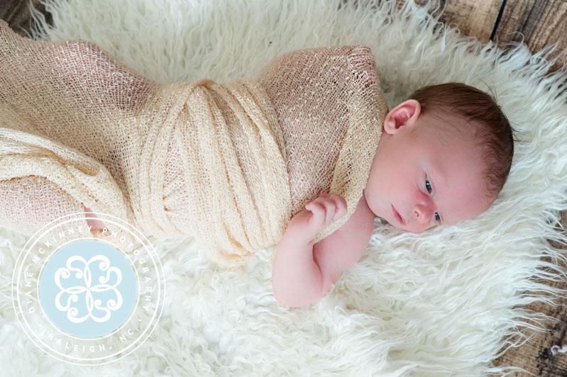 newborn photographers raleigh
