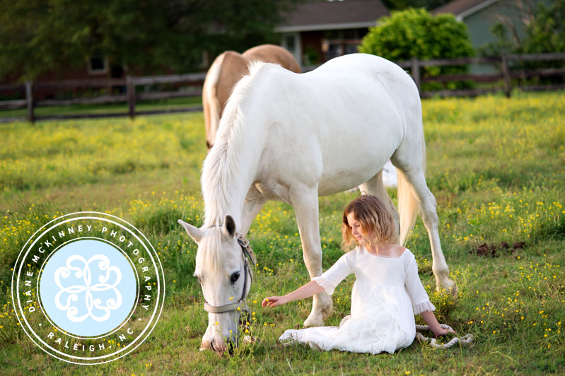 A Girl and her Horse | Raleigh Photographer