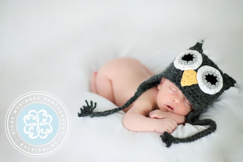 raleigh newborn photographers