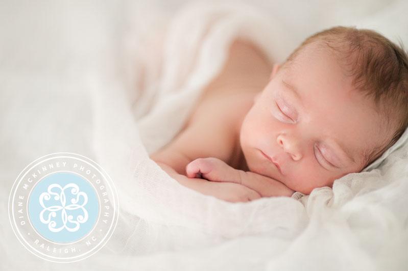 raleigh newborn photographers