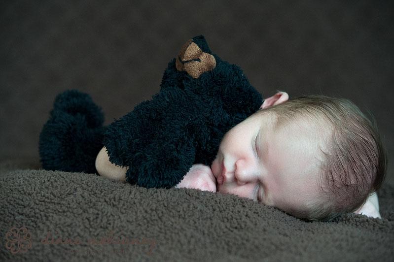 newborn photographers raleigh nc