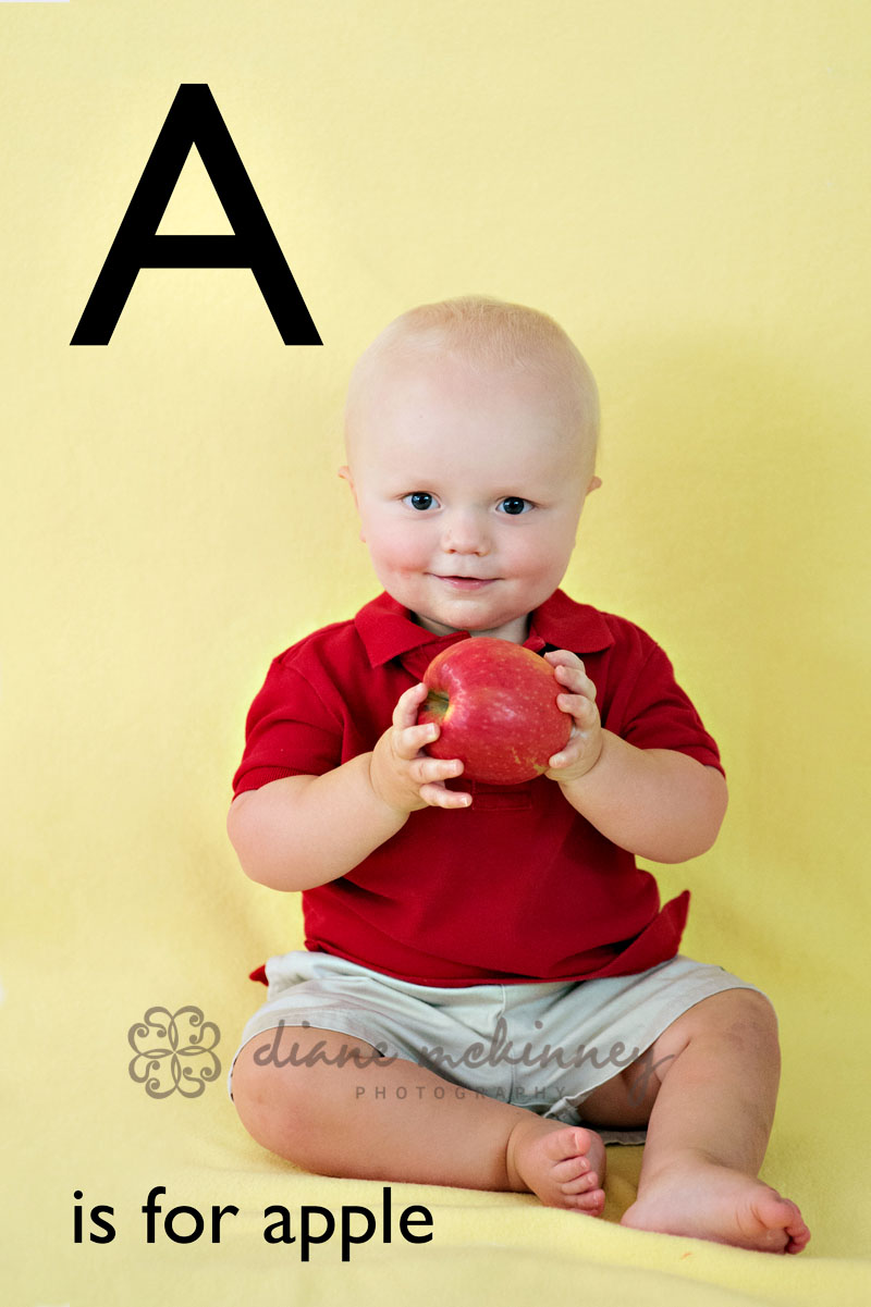 ABC book by raleigh photographer