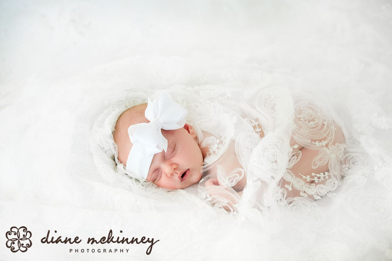 Baby O Newborn Photos | Raleigh StudioPhotographer