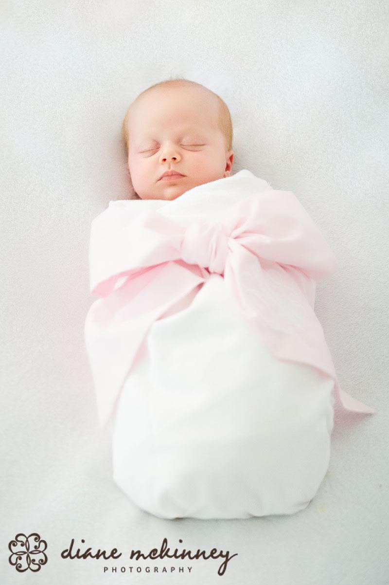 baby photos raleigh nc