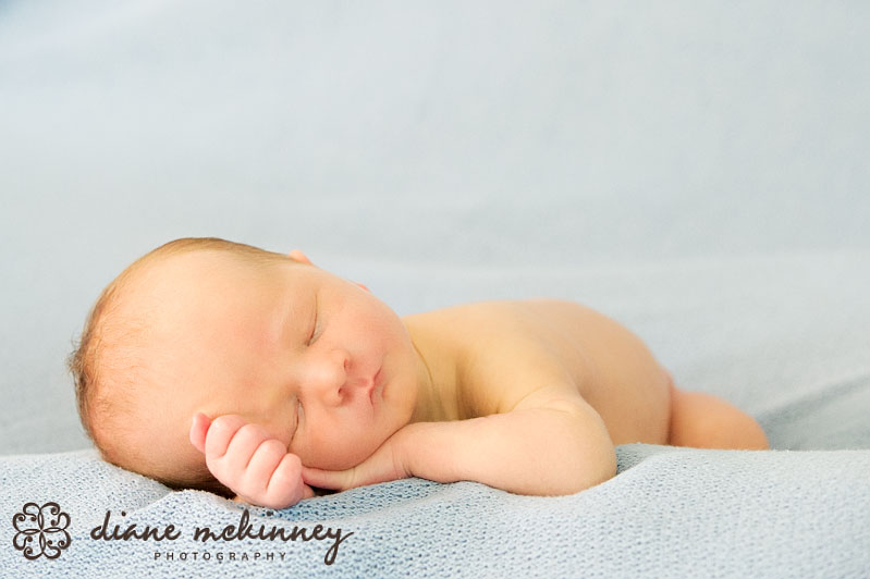 raleigh photography newborns