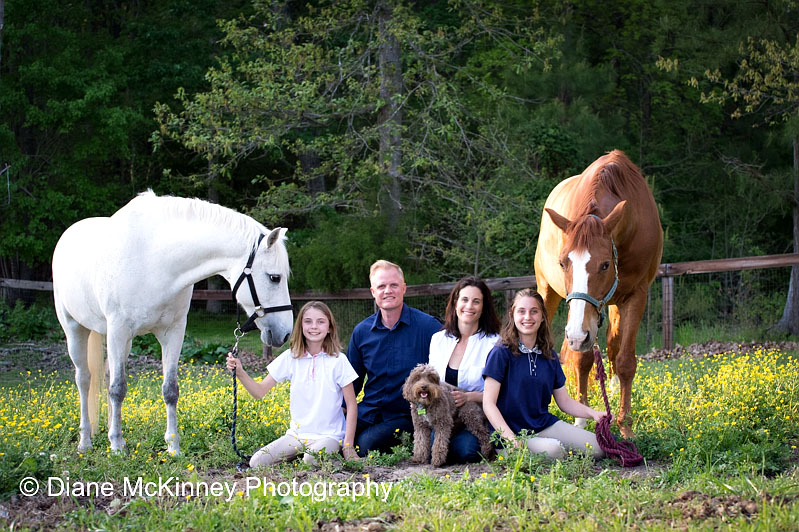 Horses are a Family Affair | Horse Photography