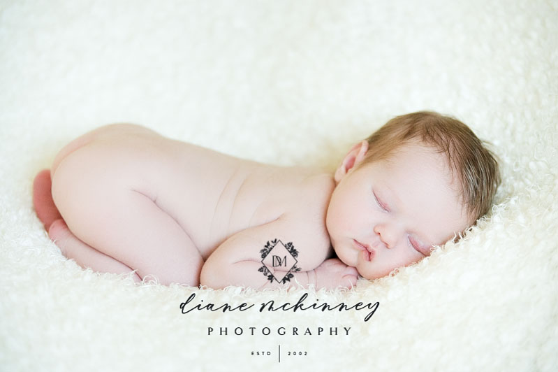 newborn baby photos