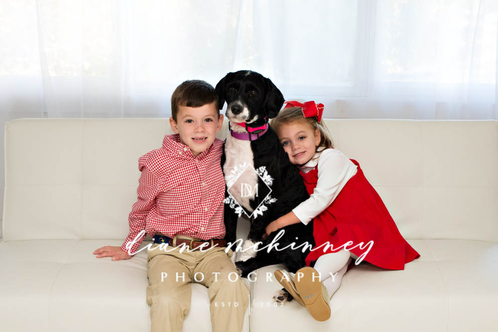 Family Photos with dog in Studio