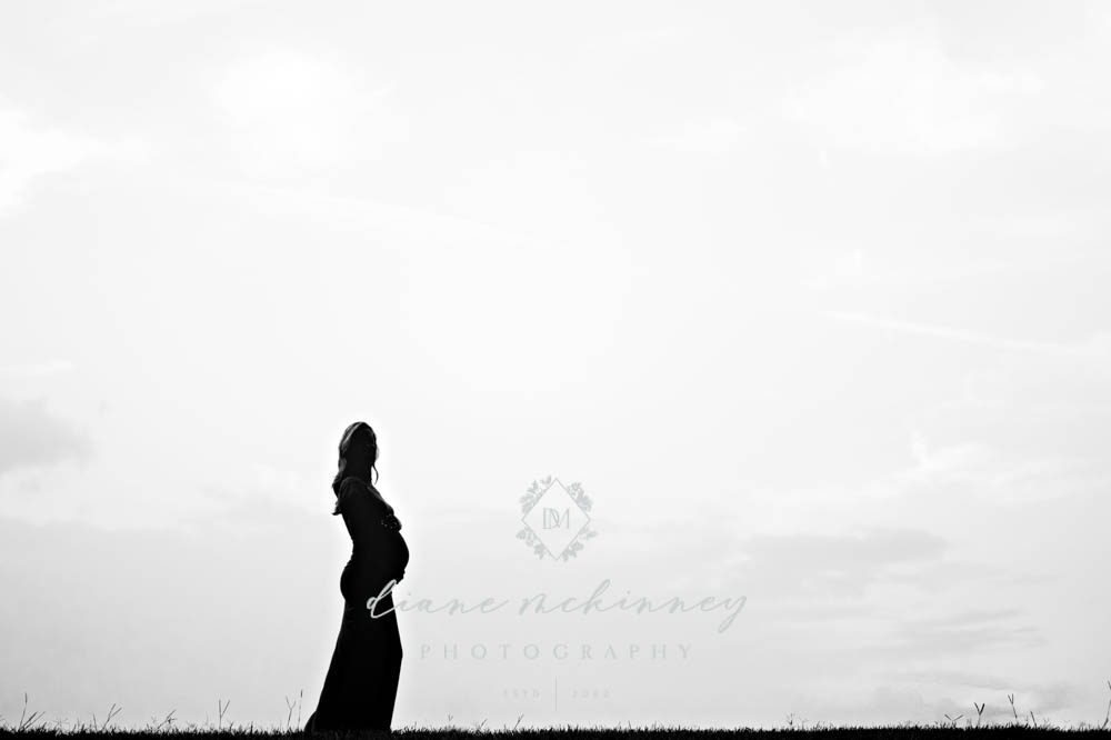 Maternity Photos at the Art Museum S & C
